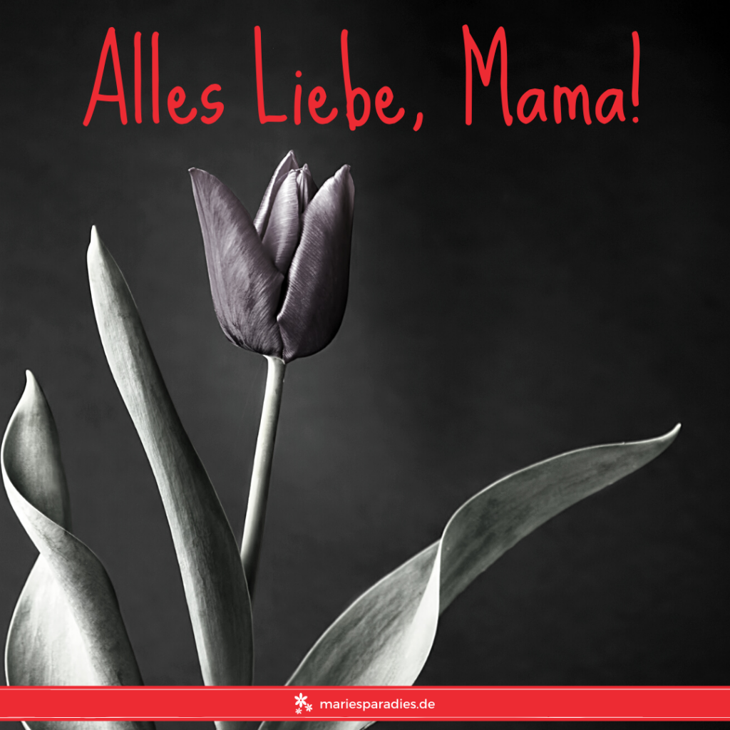 Muttertag: Alles Liebe, Mama!